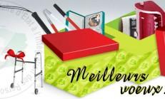 BSEIPH-2013-Xmas-cards